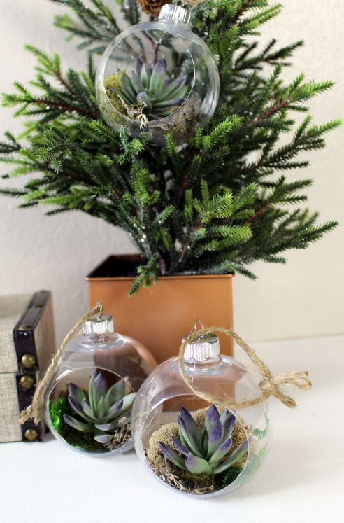 Succulent Ornaments for Christmas
