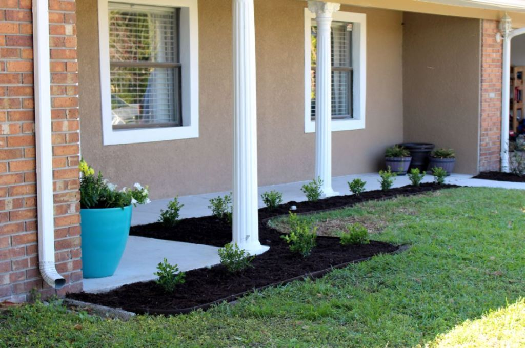 Finished landscaping using boxwoods around front porch area