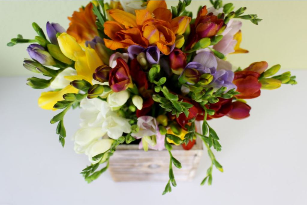 Freesia Flower Arrangement