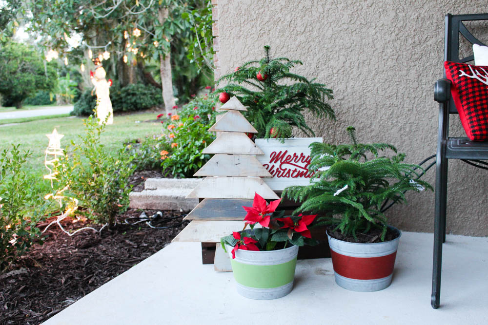 Using plants as Christmas decor - Within the Grove