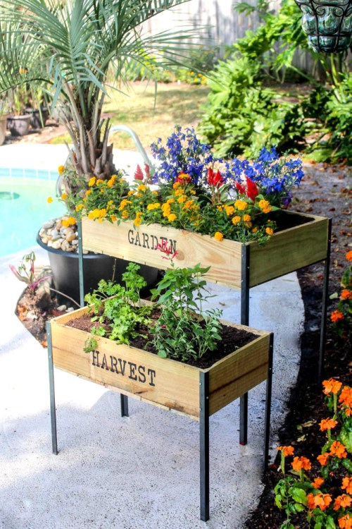 Diy Raised Garden Boxes With Organic Soil Within The Grove