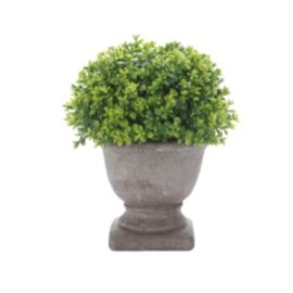Decorative Potted Plant - Within the Grove