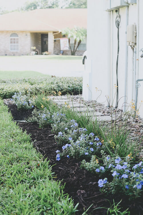 Side Yard Landscaping For Your Home