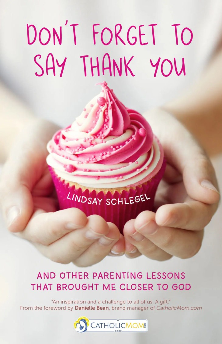 Don't Forget To Say Thank You: And Other Parenting Lessons That Brought Me Closer to God - a beautiful book about parenting and faith by Lindsay Schlegel #bookreview #faith #parenting