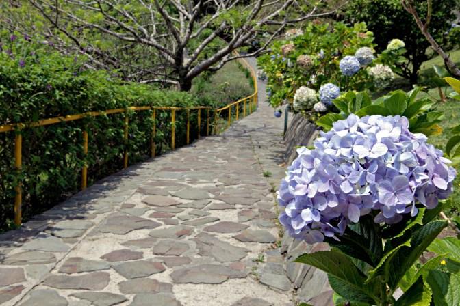 Hotel Heliconia Monteverde - JoeBaur