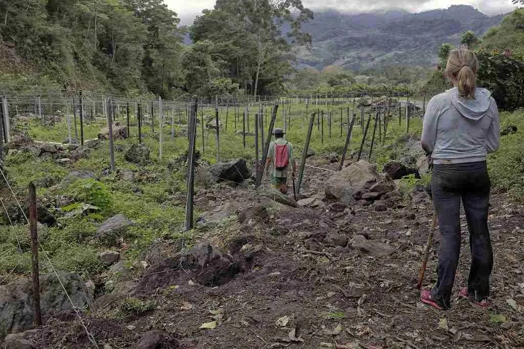 Orosi Valley Cota Rica Farm Hiking