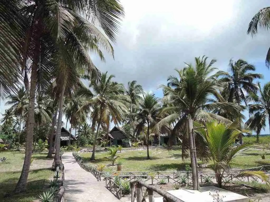 Mafia Island Tanzania Africa Best Honeymoon Destinations