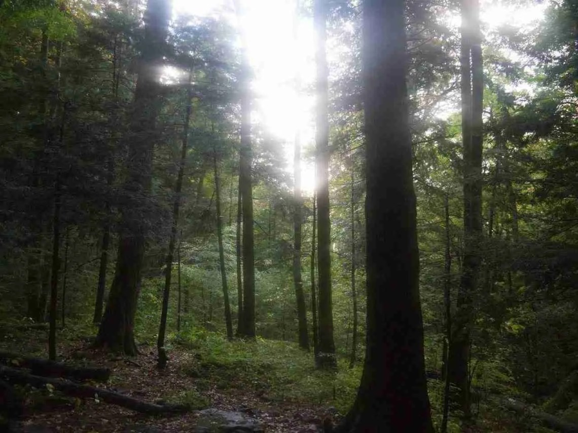 Backpacking Great Smoky Mountains National Park