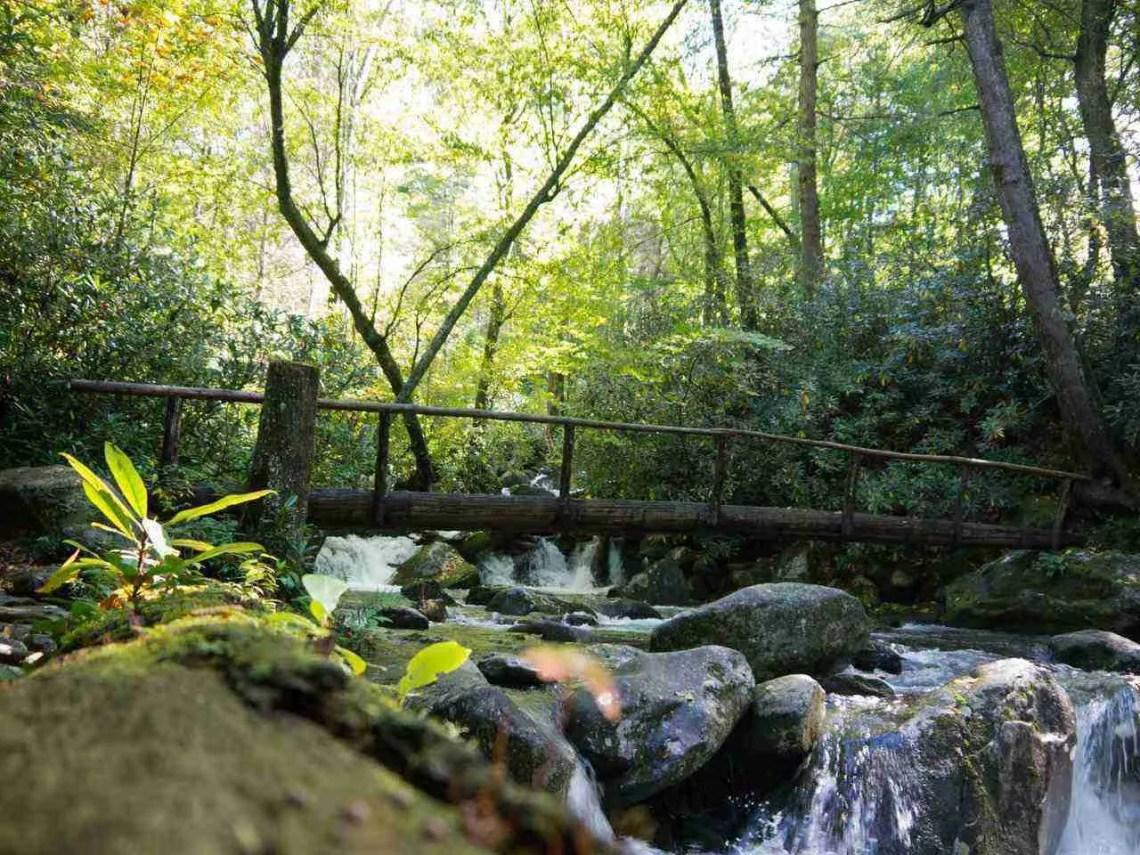 Smoky Mountains National Park Bridge