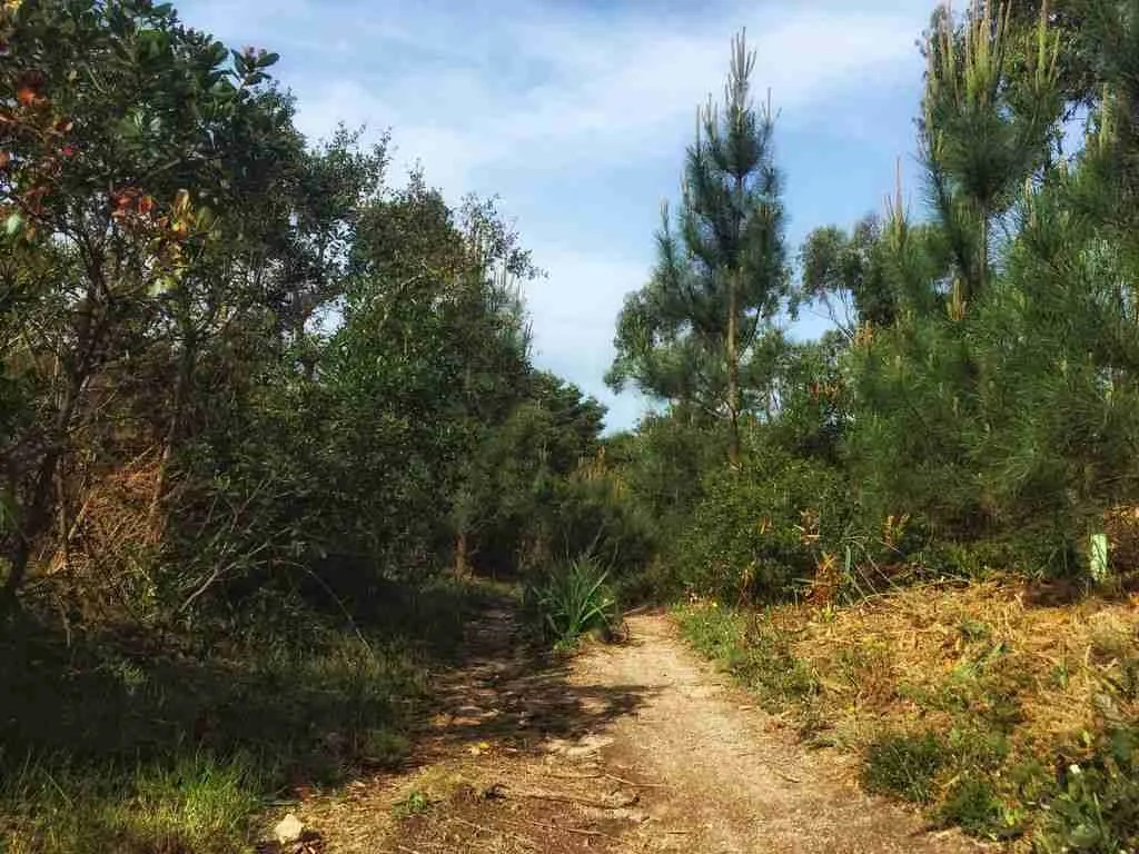 Sintra to Cabo da Roca Mountain Bike and Hiking Trail