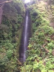 Costal trail