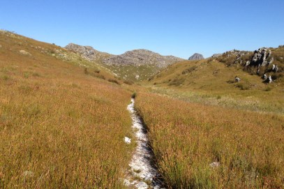 Jonkershoek - The Trail