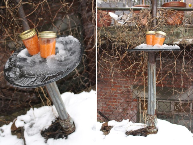 Snow Dial Juice