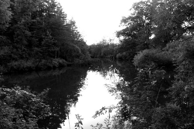 White Oak Farm Lake