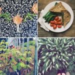 Instagram Lately: It's Summer!