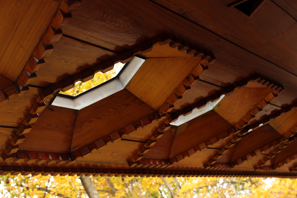 Honeycomb Windows
