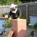 Meet A Beekeeper