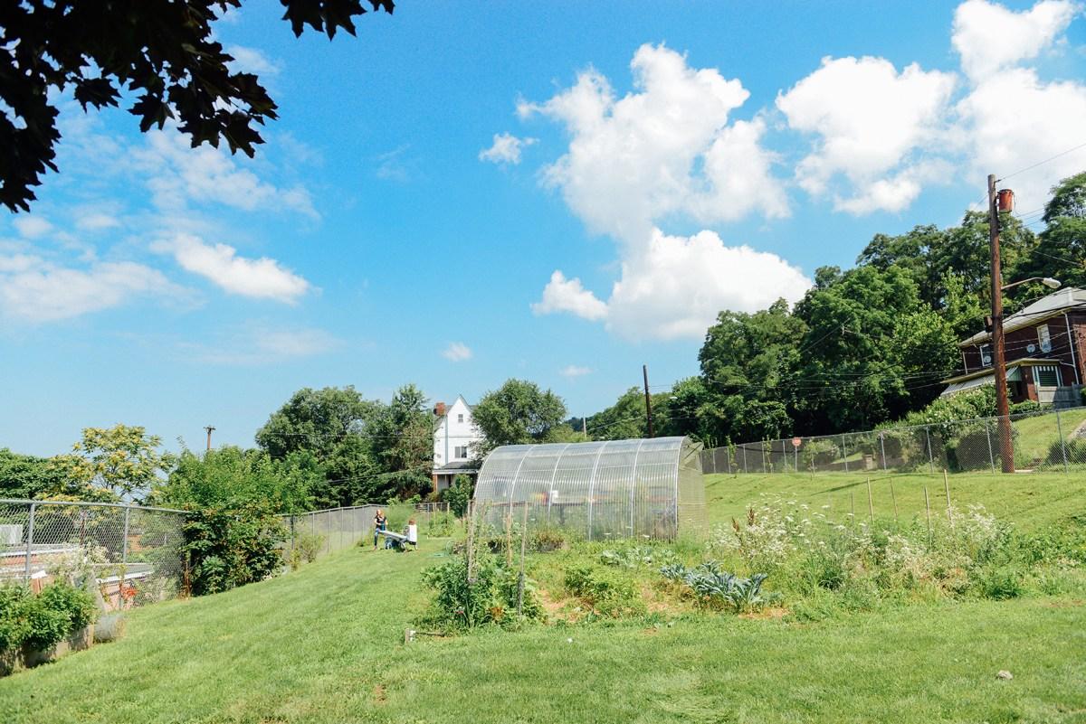 Hazelwood YMCA Garden by Quelcy 02