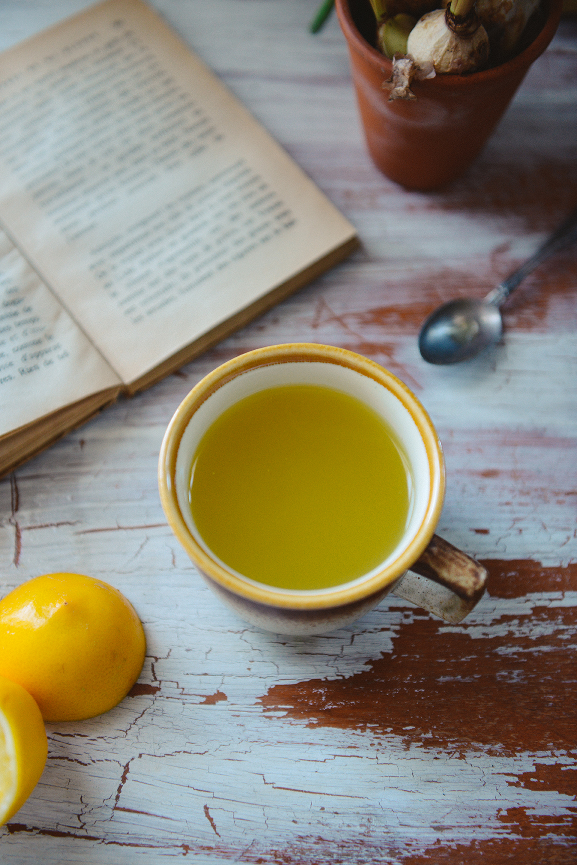 Homemade Herbal Cough Suppressant with Lemon & Turmeric // www.WithTheGrains.com
