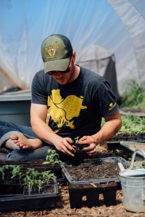 Kyle Transplanting Seedlings by With The Grains 03