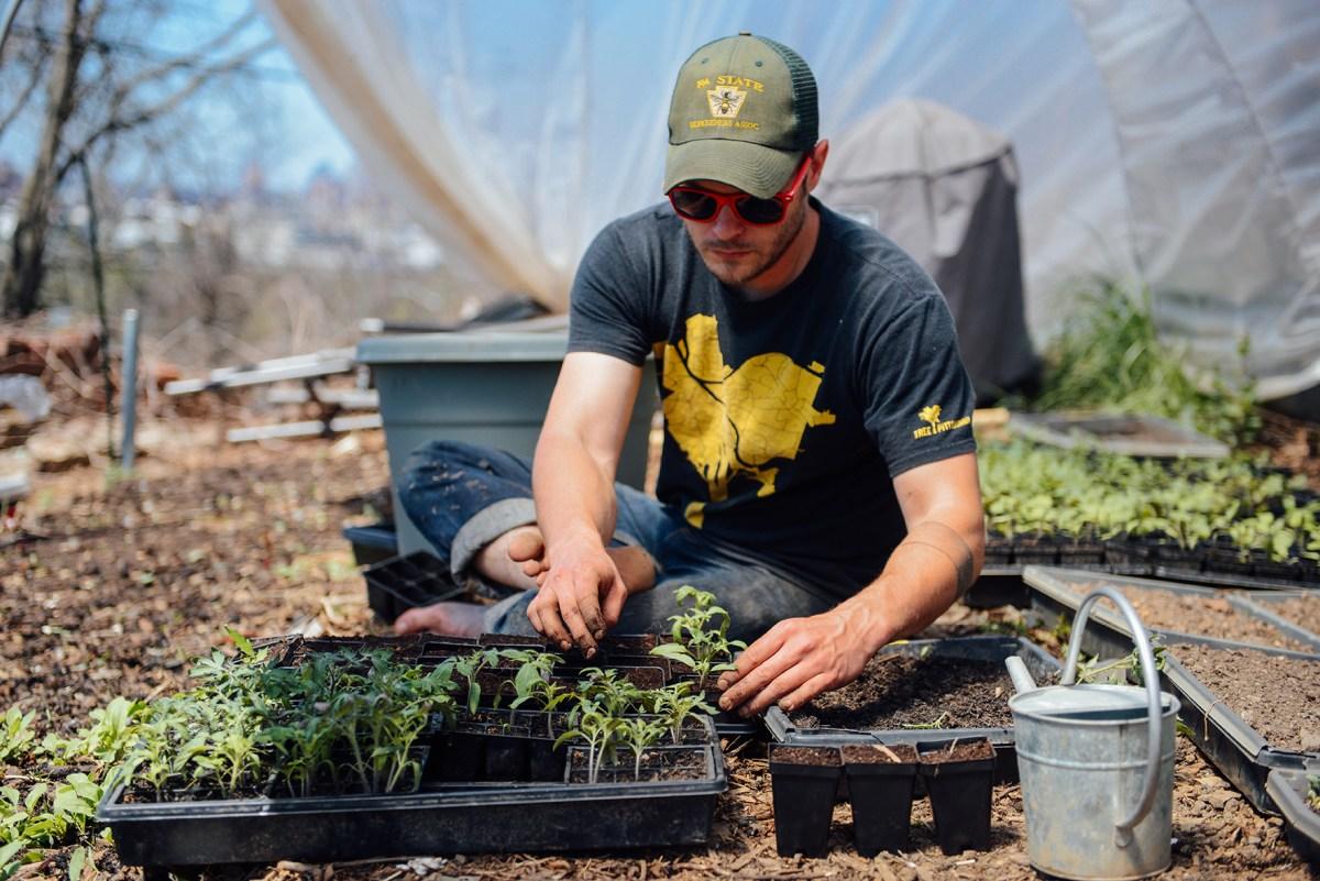 Hazelwood Urban Farms Season 2 | Spring Seedling Update // www.WithTheGrains.com