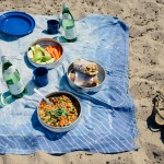 A Last Summer Hurrah: A Picnic at Lake Erie w/ a Vegan Zucchini Banh Mi & a Vietnamese Zoodle Salad