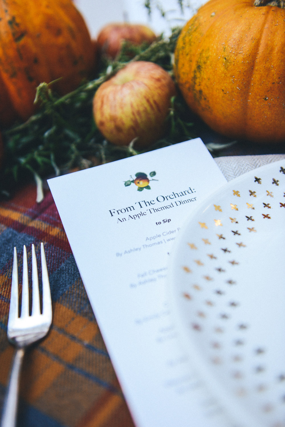From The Orchard: An Apple Themed Menu for a Pittsburgh Blogger Potluck // www.WithTheGrains.com