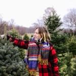A Christmas Tree Farm & Peppermint Chocolate Cookies for Santa