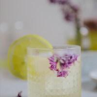 Fermented Honey Lilac Drink for Allergy Season