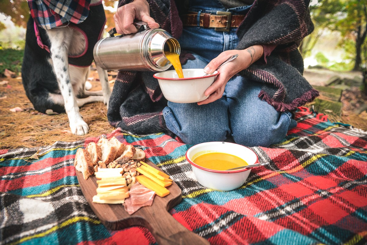 A Fall Picnic with Curry Pumpkin Soup // www.WithTheGrains.com