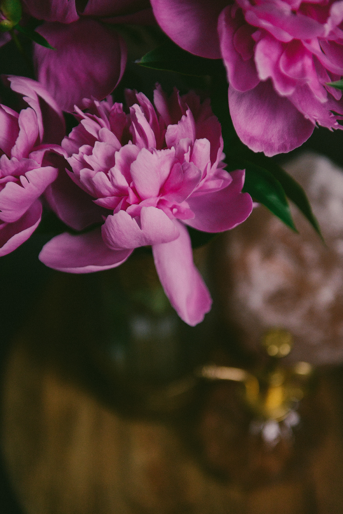 Peonies // www.WithTheGrains.com