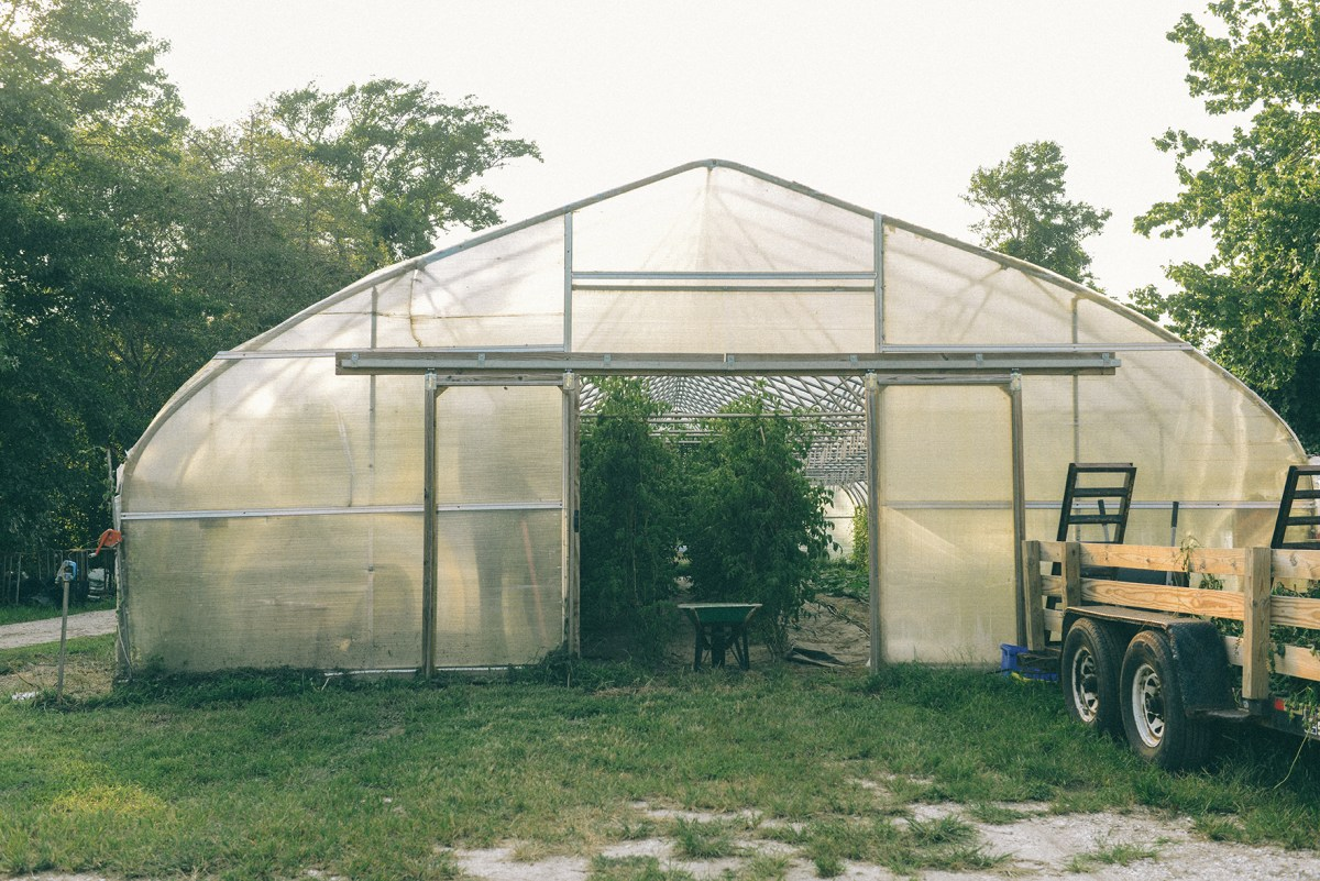 Beach Plum Farm in Cape May, NJ // www.WithTheGrains.com