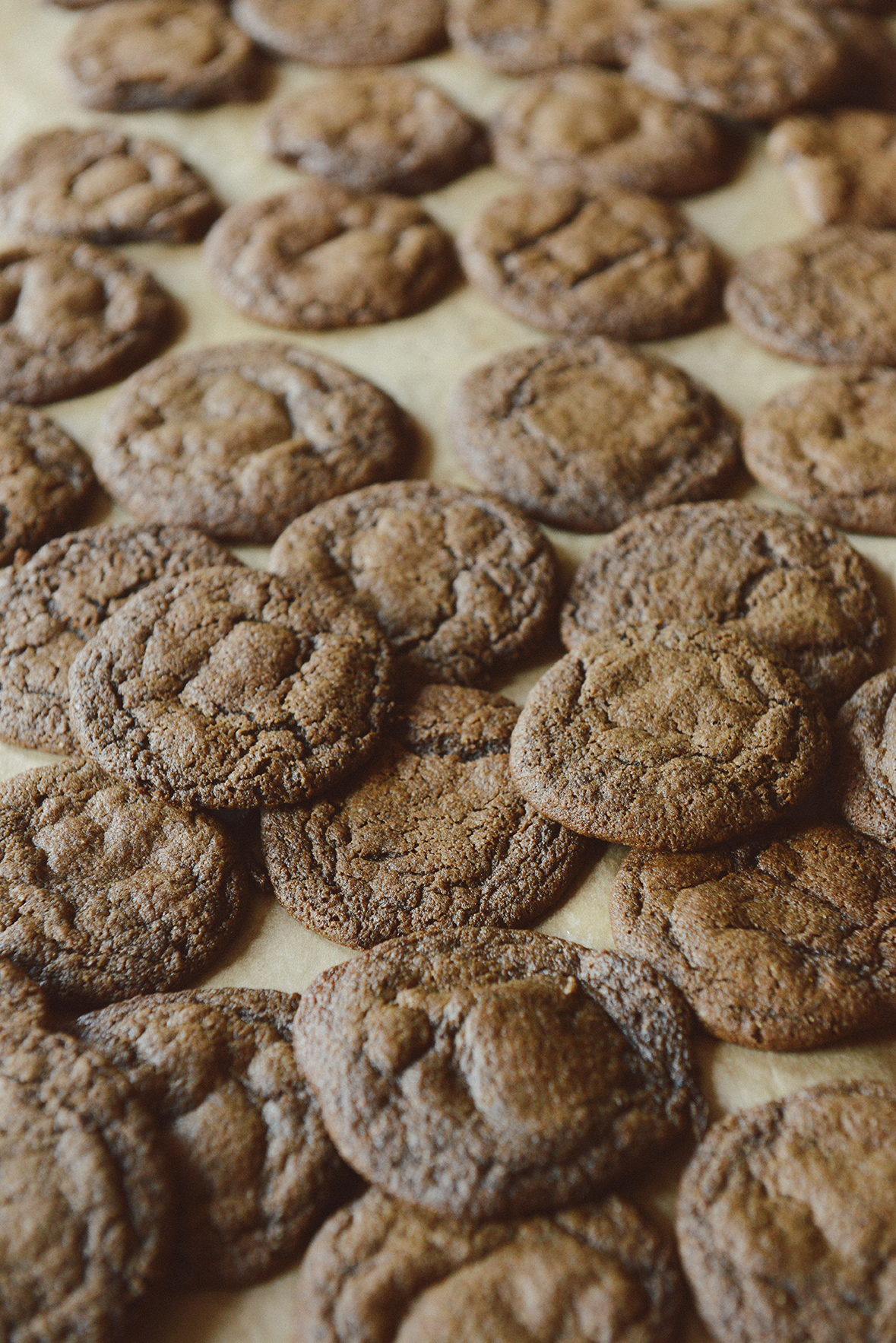Chewy Ginger Molasses Cookies with Rye Flour