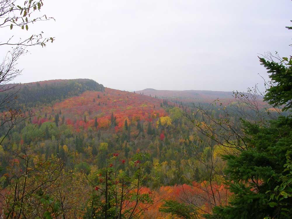 Fall in Northern Minnesota