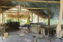 "Located on the edge of Arapapuzinho, nearly hidden by the jungle that surrounds it, is a mandioca ""factory"" where Bira and his father-in-law spend their days processing mandioca (cassava) root into a coarse flour like substance called farinha de mandioca."