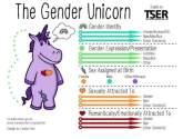 Gender_Unicorn-768x398