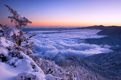 Winter in the Smokies (image theworldwelivein.tumblr.com). Stunning Photos From Around the World