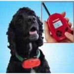 Dog-to-human language translation device - Strange Inventions