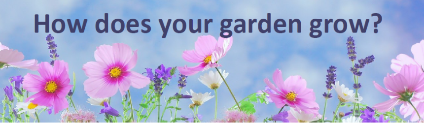 How does your garden grow image