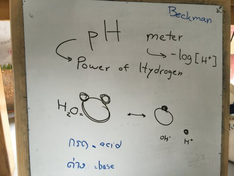 โมเลกุลน้ำหน้าตาเหมือนมิกกี้เมาส์ครับ