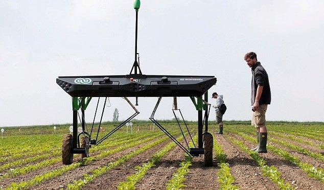 ลิงก์ข้อมูลเรื่อง AI และเกษตรกรรม