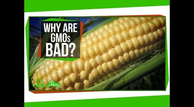 ความรู้เบื้องต้นเรื่องจีเอมโอ (GMO)