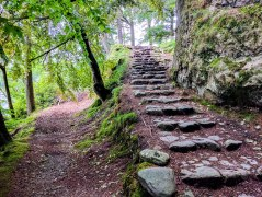 Walking-from-Glenridding-to-Aira-Force-Rocky-steps