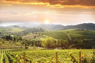CEitaly-subregion-tuscan-countryside-384x256