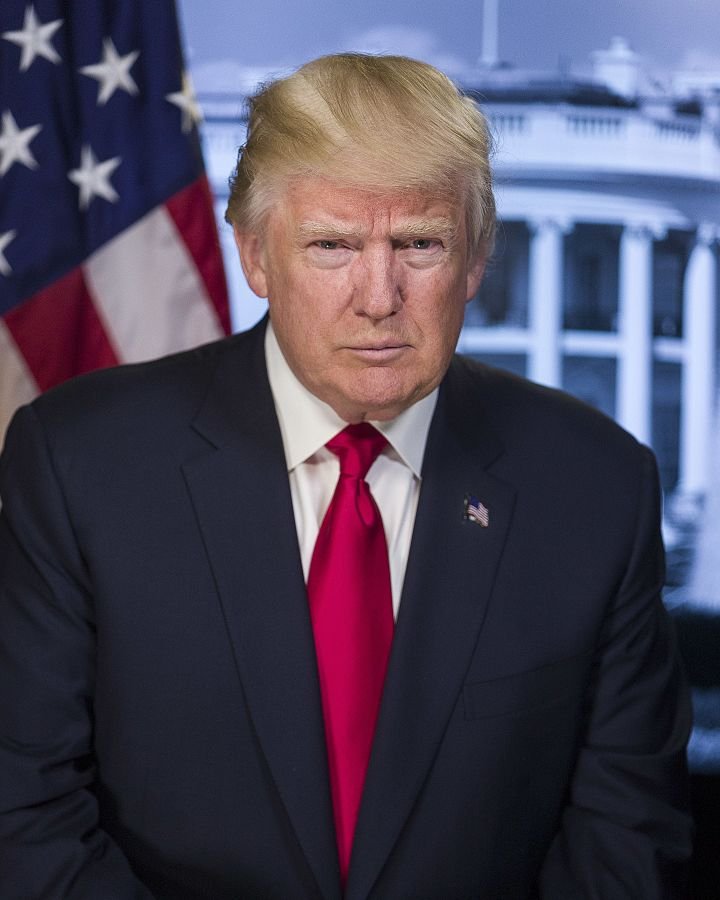Donald Trump's presidential photograph