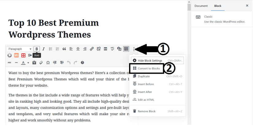 Converting To Blocks to Edit Old Posts With Gutenberg Editor