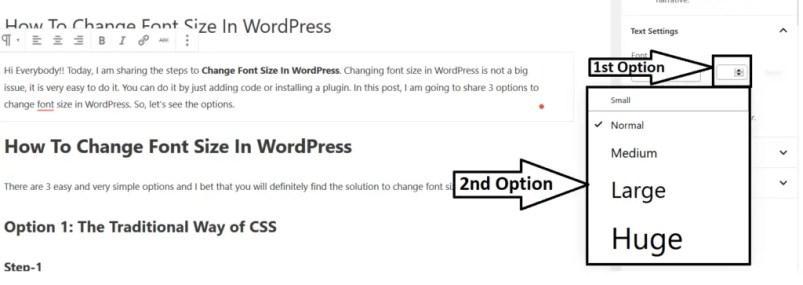 Changing Font Size In WordPress Using Gutenberg