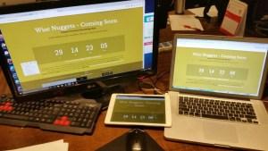 preparing www.WiseNuggets.com