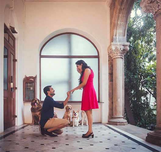 Dog wedding proposal | Indian wedding dog ideas | Save the date with dog | Save the date video Mitali and Ali #Mitali wedding by wedding Nama