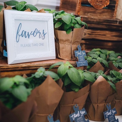 Wedding planning in 2020 | Eco-friendly wedding | Indian wedding trends | Favours for  your guests | Plants